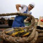 Практические советы начинающим морякам